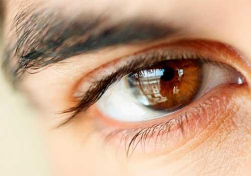 Основные сведения: зрение, строение глаза и его работа